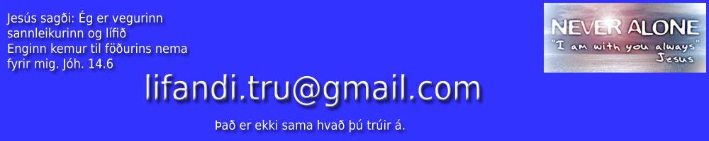 Stefán Ingi Guðjónsson - Hausmynd